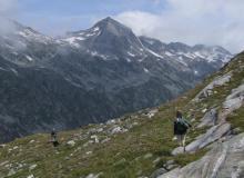 Wanderung durchs Kleinelendtal mit Blick auf Ankogelgruppe