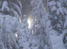 herrliche Winterlandschaften