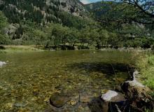 glasklare Gebirgsflüsse und Bäche