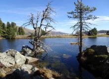 ein kleiner See an der Nockalmstrasse